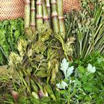 わらび、ぜんまいなど山菜の送り方と梱包方法