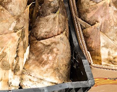筍の送り方と梱包方法