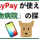 paypayが使える動物病院の探し方