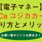 CoGCaコジカカードの作り方とメリット